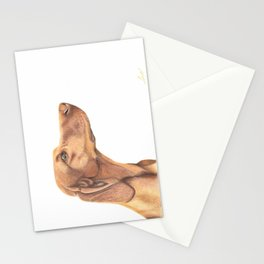 Hungarian Vizsla Stationery Cards