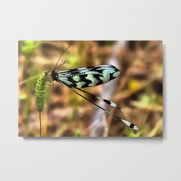 Lacewing Metal Print