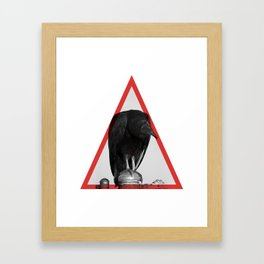 Cathartidae Framed Art Print