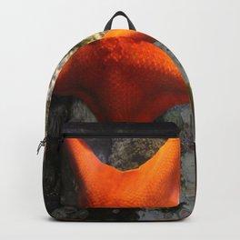 Starfish Duet Backpack