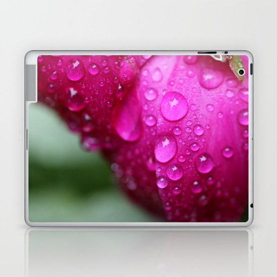 After the Rain in Pink Laptop & iPad Skin