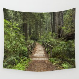Walk Through Prairie Creek Redwoods State Park Wall Tapestry