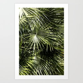 Between The Light Art Print