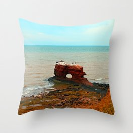 Unique Sandstone  Formation and the Birds Throw Pillow