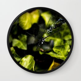 The Web And The Snail Wall Clock