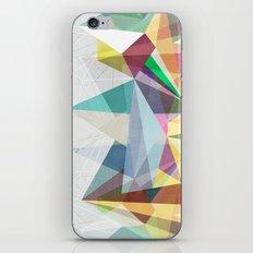 Colorflash 2 iPhone & iPod Skin