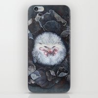 hedgehog iPhone & iPod Skins featuring Hedgehog by Marjolein Caljouw