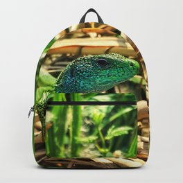 curious lizard Backpack