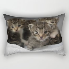 Photo of a group of cuddly kittens Rectangular Pillow