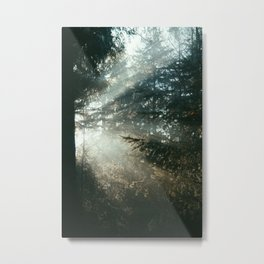 sunray madness Metal Print