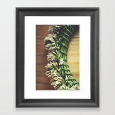 Summer Relics Framed Art Print