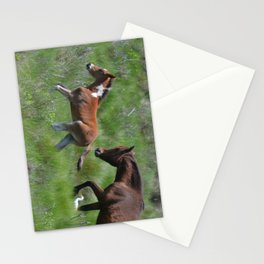 Chincoteague Ponies Stationery Cards