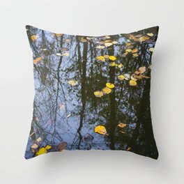 Rest and Reflect Throw Pillow