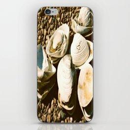 She sells seashells by the seashore iPhone Skin