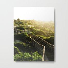 Sunny Paths Metal Print