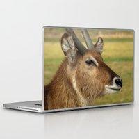 elk Laptop & iPad Skins featuring Elk by Raymond Earley