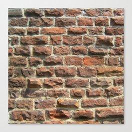 Bricks and Mortar Canvas Print