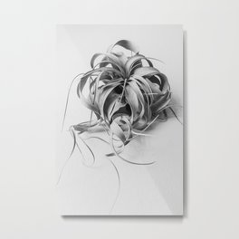 Mature Air Plant in Black and White Metal Print