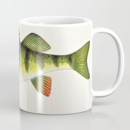 Vintage Game Fish Yellow or Barred Perch Identification Chart Chromolighograph Coffee Mug
