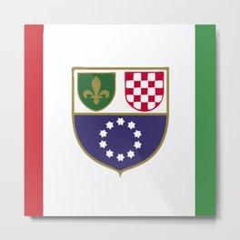 Bosnia and Herzegovina flag emblem Metal Print