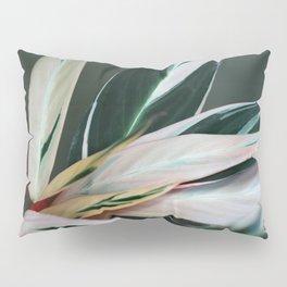 tropic of palm 6382 Pillow Sham