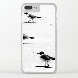 """""""Birds on South African Beach"""" Clear iPhone Case"""