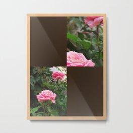 Pink Roses in Anzures 5  Blank Q3F0 Metal Print