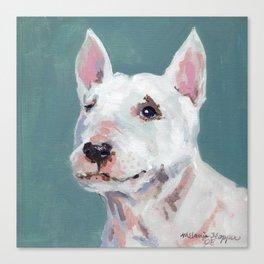 Mini Bull Terrier Canvas Print