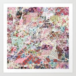 Carcassonne map Art Print