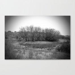 island unto itself Canvas Print