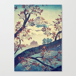 Suidi the Heights Canvas Print