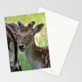 Winking deer Stationery Cards