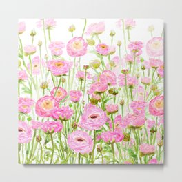 pink buttercup ranunculus field watercolor Metal Print