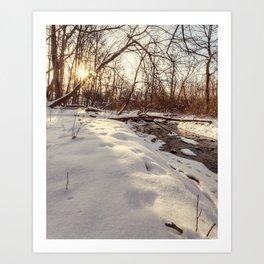 snowy and sunny Art Print