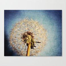 Dandelion Texture Canvas Print