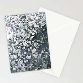 Photo flowers Stationery Cards