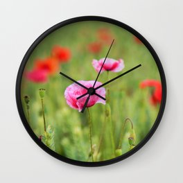 Poppy, Poppies, Mohn, Mohnblume, Flower, Blume, Blumen, Mohnblumen, Foto Wall Clock