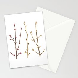 Familiar Branches Stationery Cards