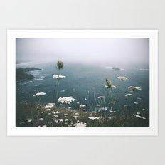 Coastal Flowers Art Print