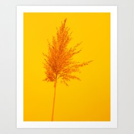 Orange Rush Art Print