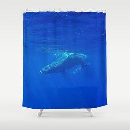 Underwater Humpbacks 4 Shower Curtain