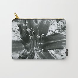 Lily 2 Carry-All Pouch