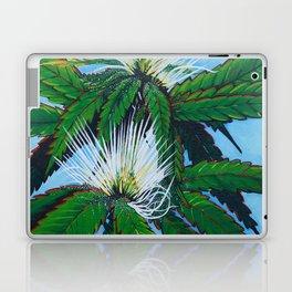 Lemon Haze Laptop & iPad Skin