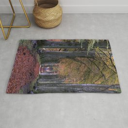 ROAD WITH FALLING LEAVES IN BETWEEN OF TREES Rug