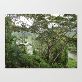 Jungle View Canvas Print