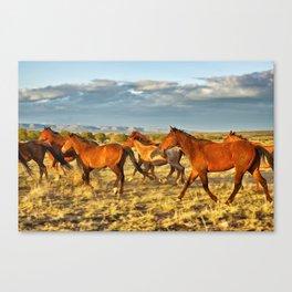 Trotting Herd Canvas Print