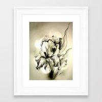 iris Framed Art Prints featuring Iris by Suzanne Kurilla