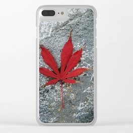 Japanese maple leaf on Rock Clear iPhone Case