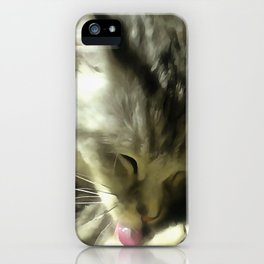 Soft And Gentle Fur And Purr Of A Grey Cat iPhone Case