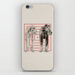 Concentric Lion Squares iPhone Skin